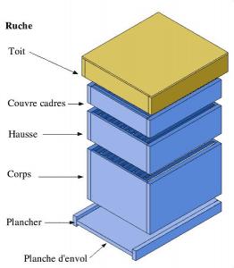 Schéma d'une ruche