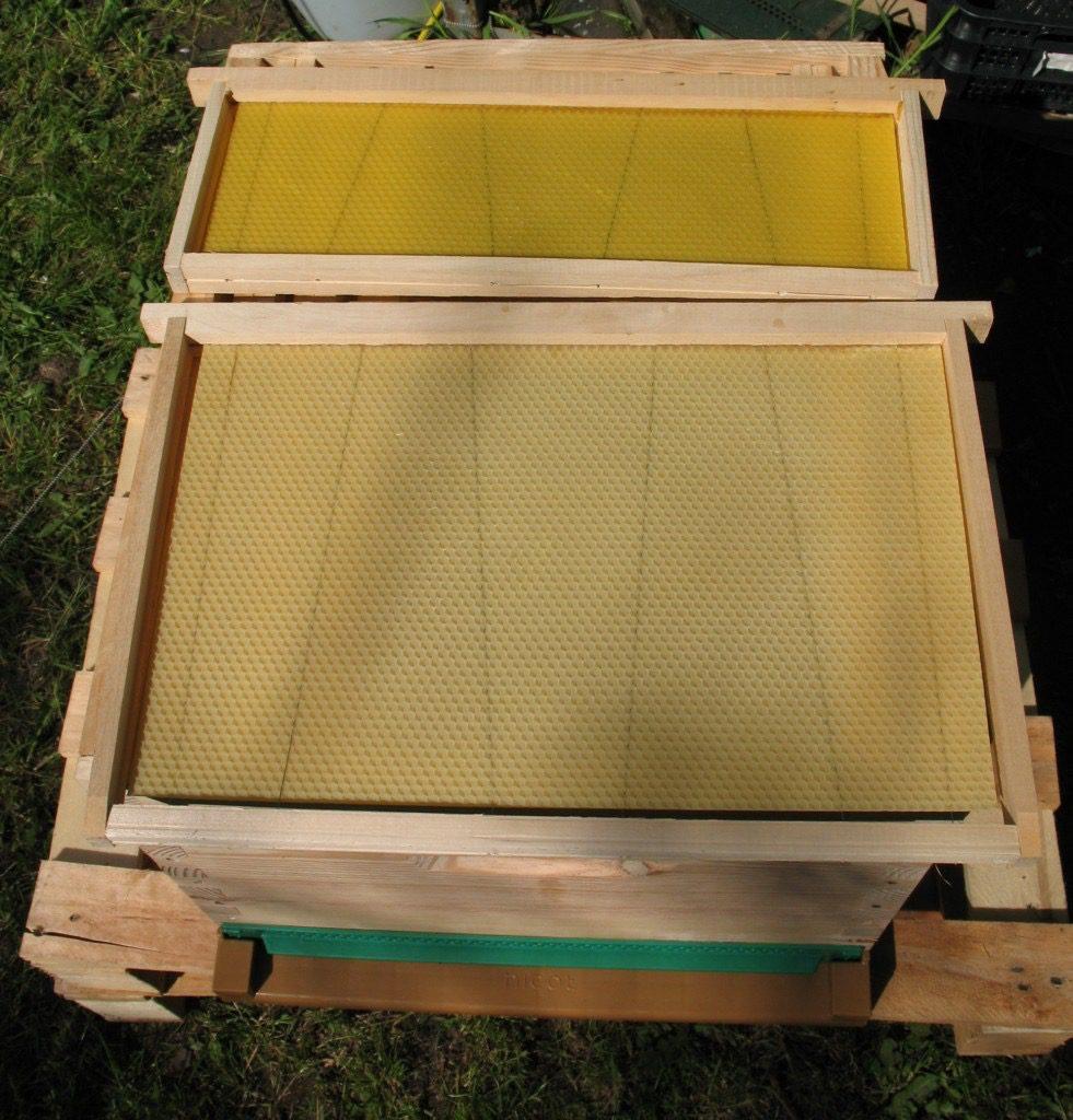 ruches et essaims les ruchers d alexandre fr