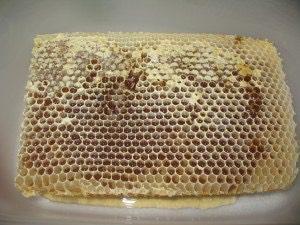 Extraction du miel d'été 2015