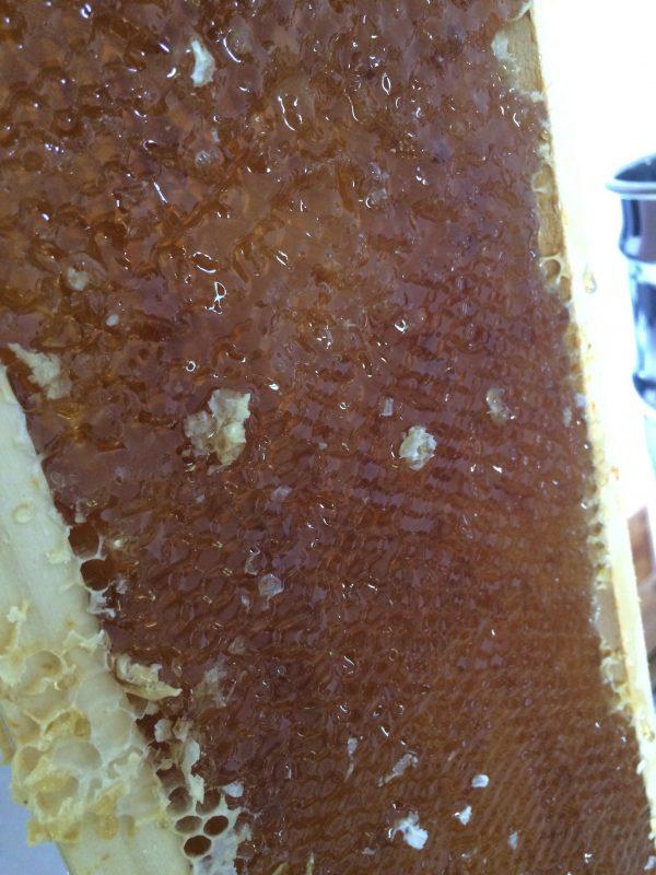 La vérité sur le miel