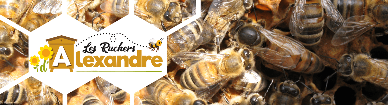 apiculteur 78200