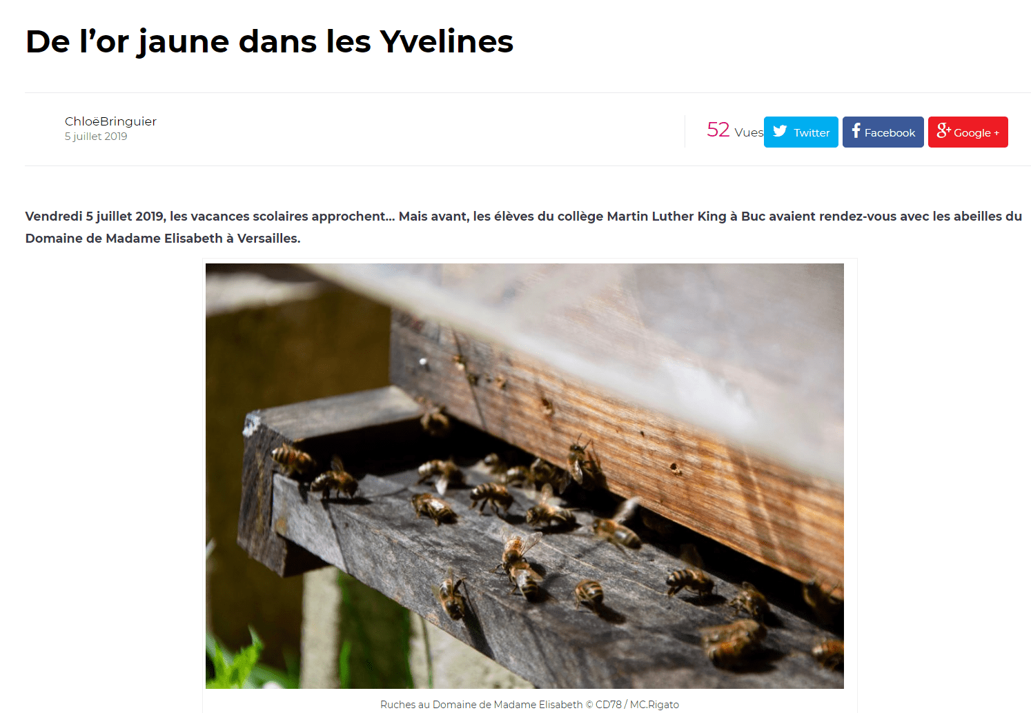 De l'or jaune dans les Yvelines